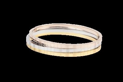 Gouden of zilveren armband voor dames van stainless steel uit onze sieraden webshop.